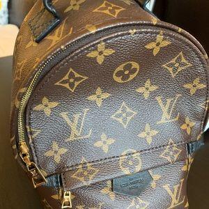 Louis Vuitton Palm Springs Mini